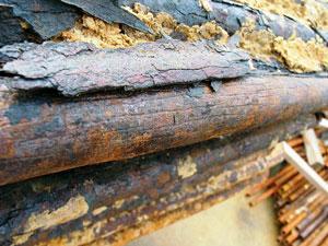 Defending Boiler Components Against Corrosive And Erosive